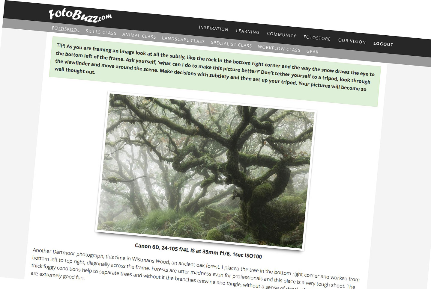 Fotobuzz - New Articles