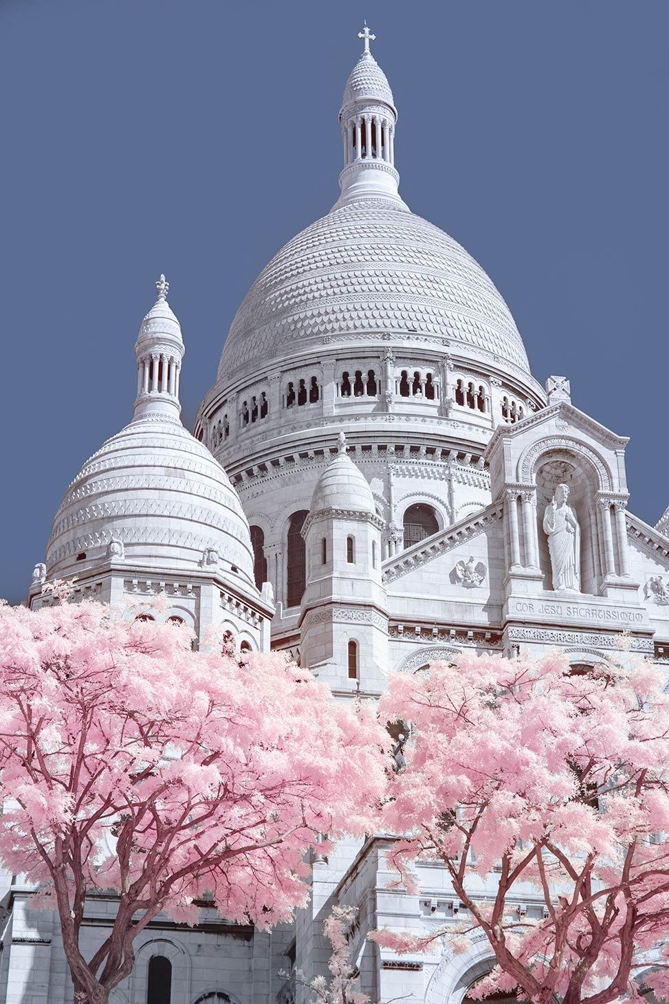 Paris in Pink - Shooting Infrared in Paris
