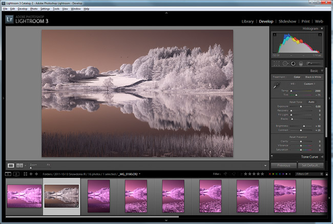 Using the eyedropper tool in Lightroom corrects the strong Infrared colour cast
