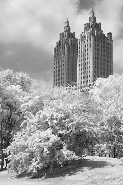 infrared image in Central Park